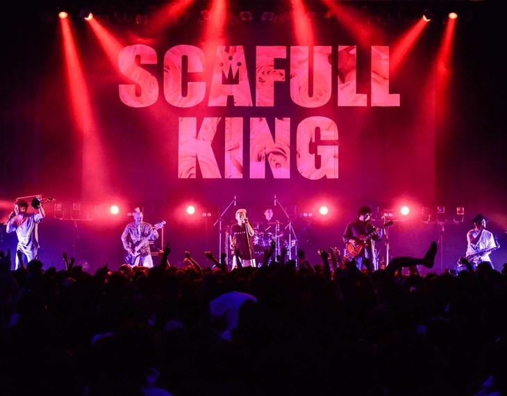 SCAFULL KING