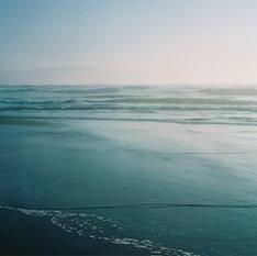くるり「春を待つ / その線は水平線」ジャケット