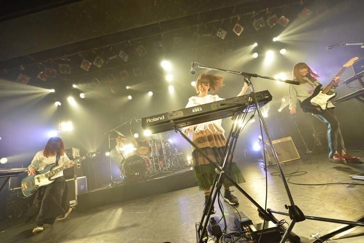 「ねごとワンマンツアー2018『SOAK』」東京・LIQUIDROOM公演の様子。(Photo by AZUSA TAKADA)