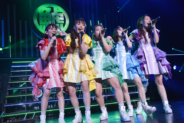 チームしゃちほこ「鯱詣2018」東京・Zepp Tokyo公演の様子。