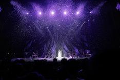 "Aimer「Aimer LIVE TOUR 17/18 ""hiver""」東京・NHKホール公演の様子。(提供:Sony Music)"