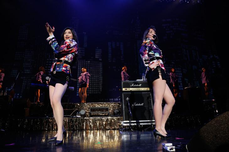 """ベッド・イン「ベッド・イン TOUR 2018 祝!""""TOKYO""""発射記念ツアー ~サクセス・ストーリーは突然に…~」ファイナル公演の様子。(撮影:ほりたよしか)"""