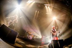 yonige「girls like girls tour」東京・TSUTAYA O-EAST公演の様子。(Photo by Viola Kam [V'z Twinkle])