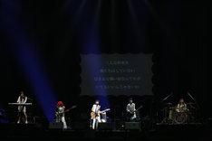 たんこぶちん(写真提供:ポニーキャニオン)