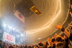 「打首獄門同好会 at 日本武道館」の様子。(Photo by HayachiN)