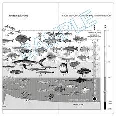 「魚分布図チケットホルダー」外側デザイン