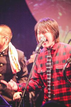 「シャナナナ」を歌う中澤寛規(GOING UNDER GROUND)。(撮影:鈴木友莉)