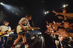 「ポルカドットスティングレイ 2018 TOUR 全知全能」東京・Zepp DiverCity TOKYO公演の様子。