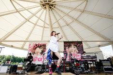 LiSA「LiVE in Smilepark Allfree !!」の様子。(Photo by Viola Kam[V'z Twinkle])