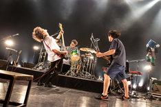 SAKANAMON「延々々」東京・Zepp Tokyo公演の様子。(Photo by Taku Fujii)