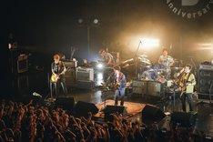 「KANA-BOONのGO!GO!5周年!シーズン2 東名阪対バンツアー『Let's go TAI-BAAN!!』」ASIAN KUNG-FU GENERATIONのライブの模様。(撮影:山川哲矢)