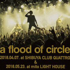 a flood of circle「a flood of circle Live プレイリスト 2018」ビジュアル