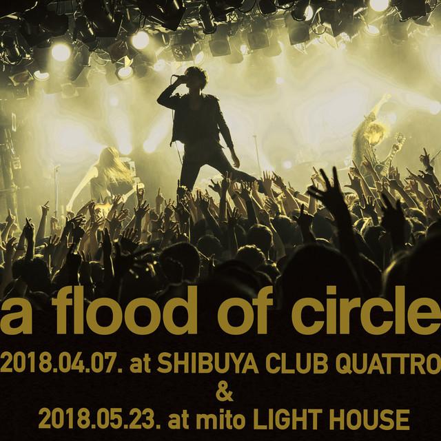 a flood of circle「a flood of circle Live プレイリスト 2018」ビジュアル