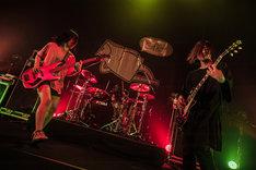 """「ヤバイTシャツ屋さん """"げんきいっぱい"""" TOUR 2018」京都・KBSホール6月21日公演の様子。(Photo by KEIJU)"""