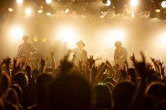 LOW IQ 01 & THE RHYTHM MAKERS +「LOW IQ 01 LIVE TOUR 2018」東京・渋谷CLUB QUATTRO公演の様子。(撮影:上坂和也)