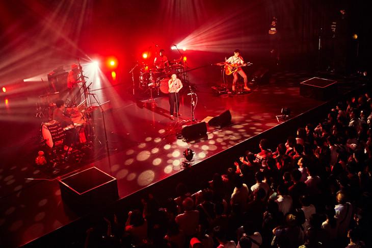 NakamuraEmi「NIPPONNO ONNAWO UTAU Vol.5 ~Release Tour 2018~」東京・EX THEATER ROPPONGI公演の様子。(Photo by TAKAO IWASAWA)