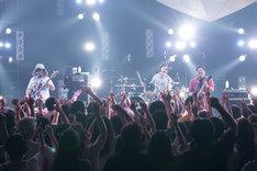 サンボマスター(写真提供:NHK)