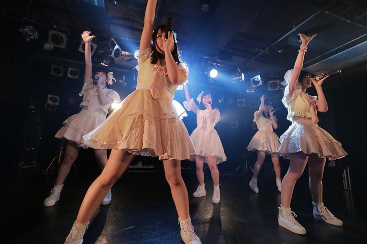 「Shine Fine Movement 1stワンマンライブ ~わたしはルミナス~」の様子。