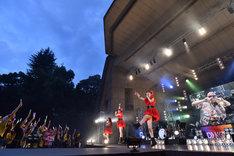 たこやきレインボー「RAINBOW SONIC 2018」東京公演の様子。