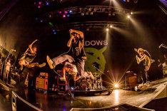 SHADOWS(Photo by takashi konuma)