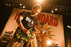 Woodsticsのミニギターをプレイする横山健(G, Vo  / Hi-STANDARD)。(Photo by Teppei Kishida)