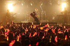 あらき(Photo by Takuro Hori[ELENORE]、Kazuya Imada[ELENORE])