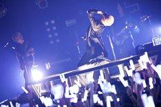 luz(Photo by Takuro Hori[ELENORE]、Kazuya Imada[ELENORE])