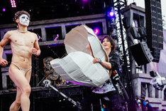 ゴールデンボンバーのライブの様子。(撮影:上山陽介)