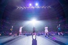 まねきケチャ「日本武道館 de まねきケチャ」の様子。(Photo by 高階裕幸 / 野田凌平 / ヤマ[@YUBOPHOTO] )