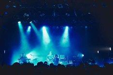 ぼくのりりっくのぼうよみ「僕はもう……」東京・WWW X公演の様子。(撮影:川崎龍弥)