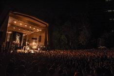 「毎晩前夜、毎日当日」でのハルカミライのライブの様子。(Photo by Masanori Fujikawa)