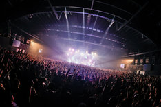 "「SUPER BEAVER『歓声前夜』Release Tour 2018 ~初めての、ラクダ運転~」東京・チームスマイル・豊洲PIT公演の様子。(撮影:日吉""JP""純平)"