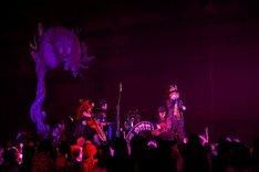 「ENTICHERS」を披露するHYDE、Sakura、YUKI、分島花音。
