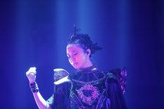 MOAMETAL(Scream, Dance)(Photo by Tsukasa Miyoshi [Showcase])