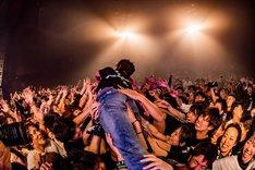 """クラウドサーフするNAMBA(Vo, B / NAMBA69)。(Photo by Takashi """"TAKA"""" Konuma)"""