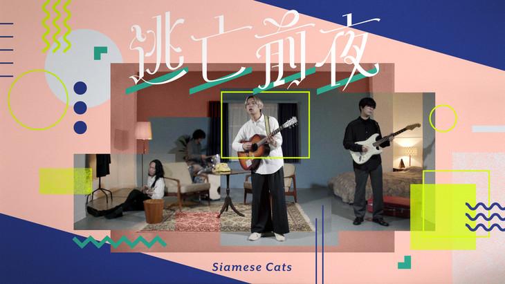 シャムキャッツ「逃亡前夜」ミュージックビデオのサムネイル画像。