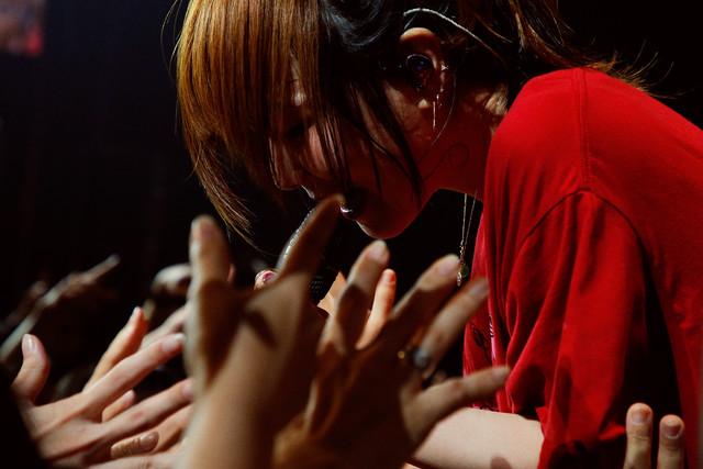 aiko「Love Like Pop vol.20」の様子。(撮影:岡田貴之)
