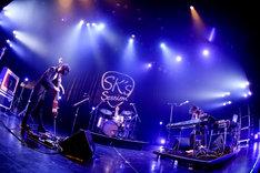 Schroeder-Headzのライブの様子。(Photo by Viola Kam[V'z Twinkle])