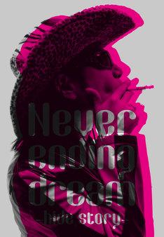 大島暁美著「Never ending dream -hide story-」表紙
