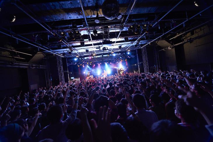 「nano.RIPE 20th anniversary TOUR 2018 FINAL『きせきのつるぎ』」の様子。
