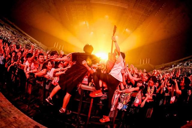 「DMCC REAL ONEMAN TOUR -EXTRA!!!- 2016」でのキュウソネコカミ。(写真提供:Viola Kam)