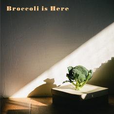 Orangeade「Broccoli is Here」ジャケット