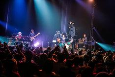 吉田山田「吉田山田ツアー2018 <Band Set>」最終公演の様子。(撮影:松本いづみ)