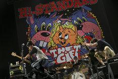 Hi-STANDARD(Photo by Teppei Kishida)