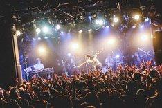「石崎ひゅーい 弾き語りワンマンTOUR 2018『アンコール』」東京・渋谷CLUB QUATTRO公演の様子。(撮影:鈴木友莉)