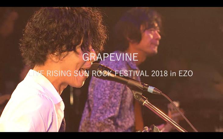 GRAPEVINE「ALL THE LIGHT」初回限定盤に付属するDVD「GRAPEVINE LIVE RISING SUN ROCK FESTIVAL 2018 in EZO」のワンシーン。