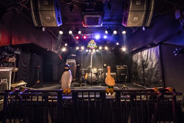 MUSIC ZOO KOBE 太陽と虎のステージ。