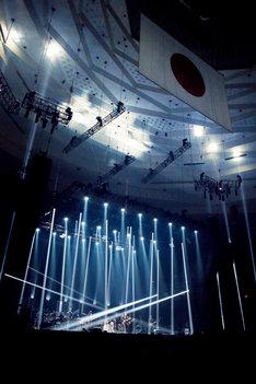 エレファントカシマシ「新春ライブ 2019」東京・日本武道館公演の様子。(写真提供:ユニバーサルシグマ)