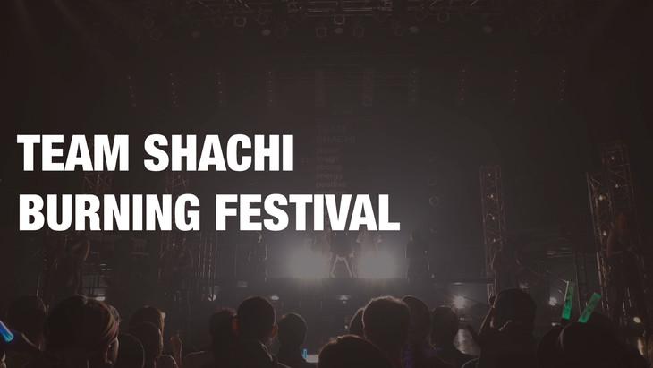 TEAM SHACHI「BURNING FESTIVAL」のワンシーン。