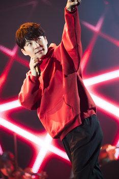 「星野源 DOME TOUR 2019『POP VIRUS』」大阪・京セラドーム大阪公演の様子。(撮影:田中聖太郎)